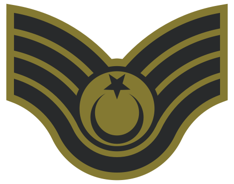 017_Technical_Sergeant.jpg